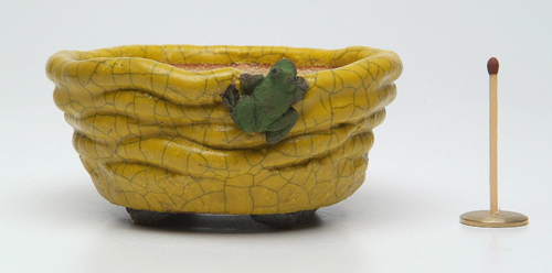 Accent pot Bonsai Pot image