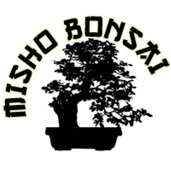 bonsai_misho_bonsai_01.png image