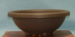 bonsai_plastic_pot_01.jpg image