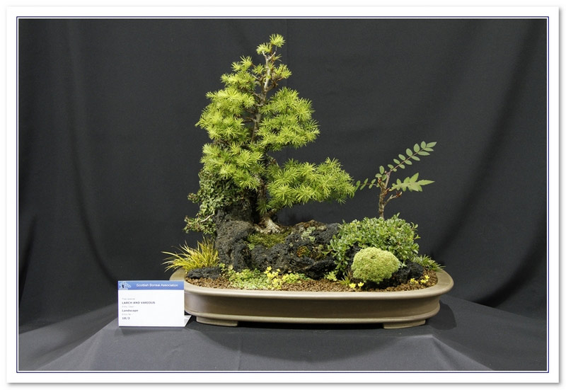 GS2015 - Larch And Various