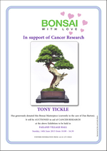 Charity bonsai exhibition